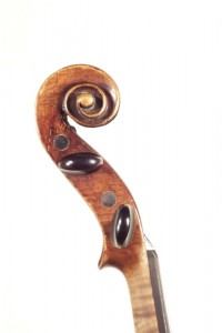 Violino Postiglione,1881
